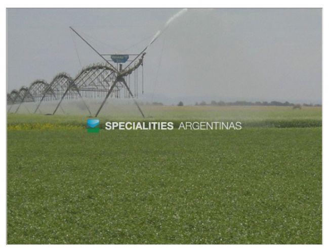 [SPECIALITIES ARGENTINAS]